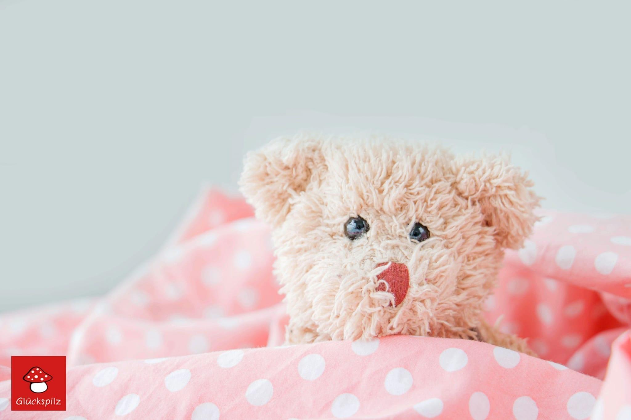 Teddybär in Decke